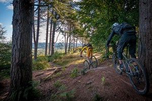 The endless singletrack in the Surrey Hills