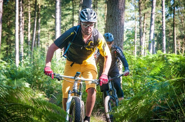 Mountain Bike Guiding in the Surrey Hills